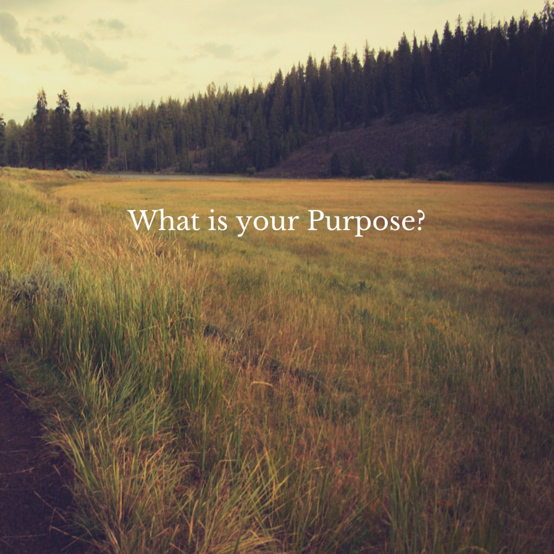 What is Your Purpose
